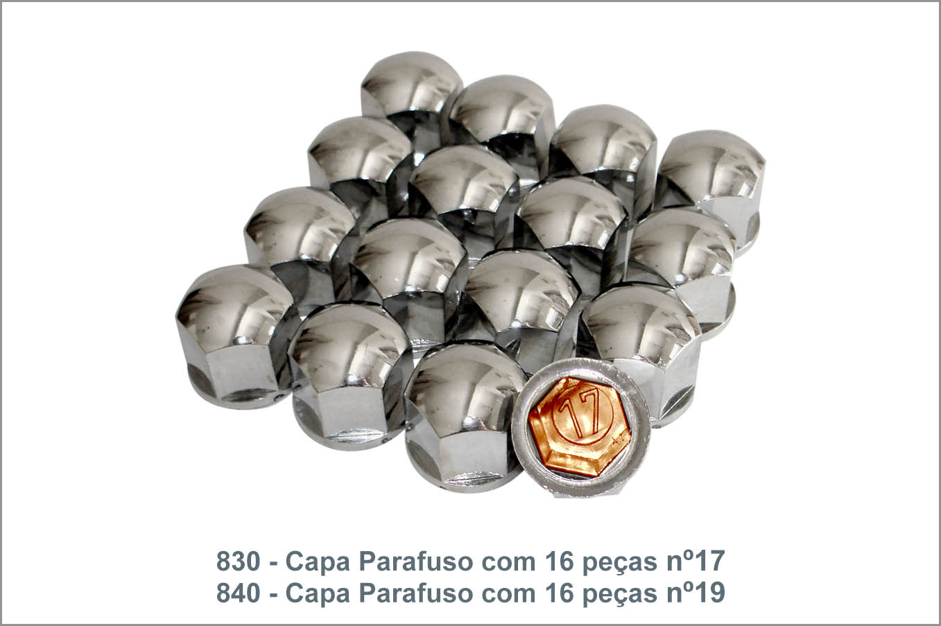 830 840 - Capa Parafuso com 16 pçs nº17 e nº19